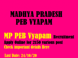 latest-and-big-recruitment-in-mp-peb-vyapam-for-group-5-check-details-here
