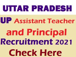 UP Assistant Teacher and Principal Recruitment 2021