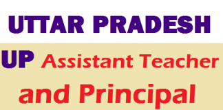 UP Assistant Teacher and Principal Recruitment 2021