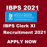 IBPS Clerk XI 2021
